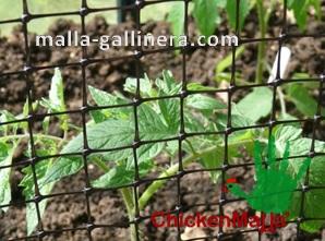 Esta malla también es usada en la agricultura para proteger sembradíos y hortalizas.