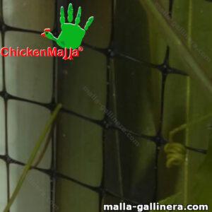 Malla gallinera chickenmalla instalada en jardín