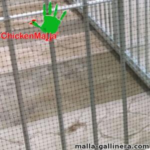 Malla gallinera chickenmalla instalada en portón de hierro